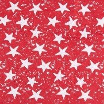 Portable Fabric Schedule - red stars